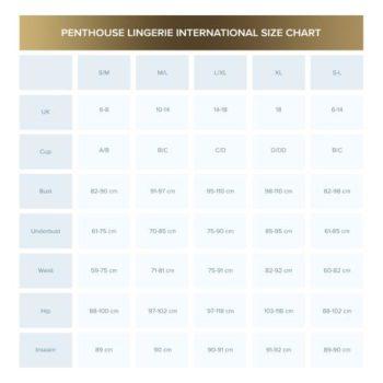 Penthouse Lingerie - Libido Boost Babydoll - Zwart